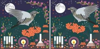 Cart?es m?gicos Os pássaros com grupos de bagas de Rowan voam no laboratório da alquimia na noite witchcraft ilustração stock