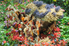 Cart filled Bountiful Autumn Harvest royalty free stock photos
