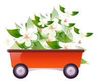 Cart flowers Stock Images
