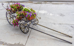 Cart with flowers Stock Photos
