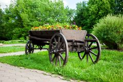 Cart with flowers Stock Photography