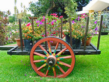 Cart with flowers. Wagon withe tropical flowers in El Salvador Royalty Free Stock Image