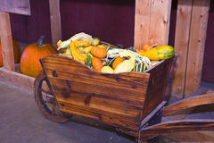 Cart of Gourds Royalty Free Stock Image
