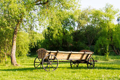 Cart among green grass landscape Stock Image