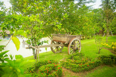 The cart in a green park. The wooden cart in a green park. Summer royalty free stock images