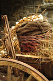 Cart with hay Stock Images
