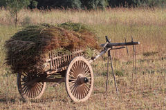 Cart of Hay Royalty Free Stock Photo