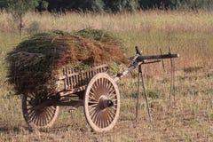 Cart of Hay Royalty Free Stock Photo
