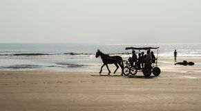 A cart with a horse on the beach Royalty Free Stock Photography