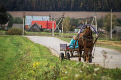 A cart with a horse in a Russian village. Royalty Free Stock Images