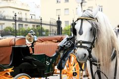 Cart and horse, Spain Royalty Free Stock Photos
