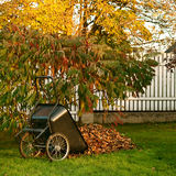 Cart with leaves Royalty Free Stock Photography