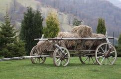 Cart - RAW format Stock Photography