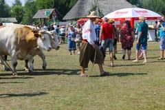 Cart with oxes on Sorochyn fair. Velyki Sorochyntsi, Ukraine - August 20, 2016: Cart with oxes  on Sorochyn fair Stock Photo