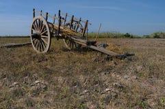 Cart at paddy field. Stock Photos