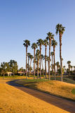 Cart Path and Tee at Golf Course Royalty Free Stock Images