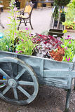 Cart with plants Stock Photo