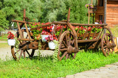 Cart of red flower pots Royalty Free Stock Photography