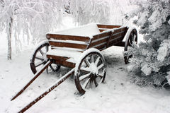 Cart in snow. Stock Image