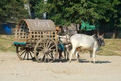 Cart tirado pelo gebo e pelos passageiros de espera do ` do táxi do ` das palavras myanmar Fotografia de Stock