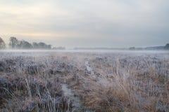 Path through moorland in winter Stock Photo