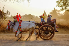 Cart on the way to Thatbyinnyu Temple Stock Image