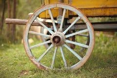 Cart wheel. Old wooden cart wheel on a green grass Stock Photos
