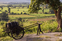 Cart with a wine keg. Cart with a keg of wine on the background of vineyards Stock Image