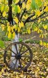 Cart Wooden Wheel Royalty Free Stock Image