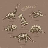 Carta adorabile con gli scheletri divertenti del dinosauro nello stile del fumetto Fotografia Stock Libera da Diritti