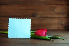 Carta benvenuta e tulipano rosso su fondo di legno scuro Concetto di Immagine Stock