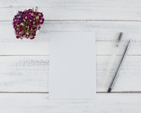 Carta bianca in bianco con due penne nere Fotografia Stock Libera da Diritti