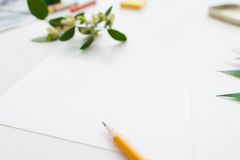 Carta in bianco con lo spazio libero dei fiori e della matita Immagine Stock