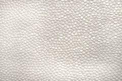 Carta in bianco della bolla con struttura Immagini Stock
