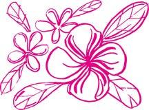 carta blanca del arte de la flora Fotografía de archivo