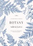 Carta botanica per con le foglie Fotografia Stock Libera da Diritti