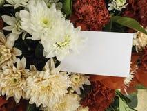 Carta con il fiore Immagine Stock Libera da Diritti