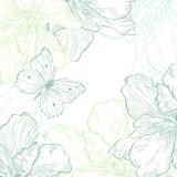 Carta con la farfalla ed i fiori Fotografie Stock