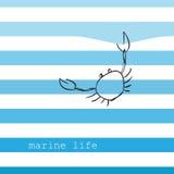 Carta con le bande marine Illustrazione di Stock