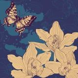 Carta d'annata con butterfliy e le orchidee illustrazione vettoriale