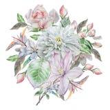 Carta d'annata con i fiori della molla watercolor illustrazione di stock
