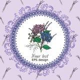 Carta d'annata con i fiori della Provenza della molla del cerchio Immagine Stock