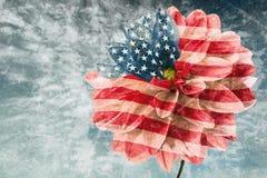 Carta d'annata con la bandiera di U.S.A. Immagini Stock