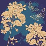 Carta d'annata con le farfalle ed i fiori della mela royalty illustrazione gratis