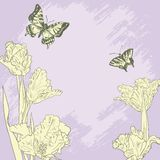 Carta d'annata con le farfalle ed i tulipani illustrazione di stock
