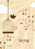 Carta d'annata della primavera Fotografia Stock