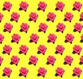 Carta da imballaggio del emplate floreale Fotografia Stock