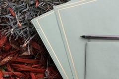 Carta da lettere e penna su erba e su legno Fotografia Stock