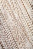 Carta da parati bianca di struttura del fondo di colore del vecchio tek di legno Immagini Stock