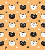 Carta da parati in bianco e nero del gattino Fotografia Stock Libera da Diritti